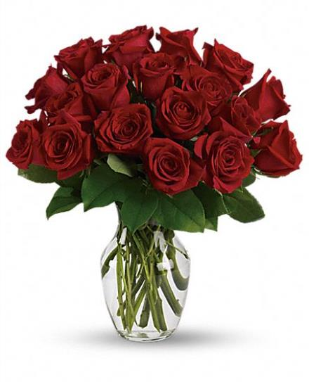 Valentine's Red Roses
