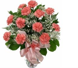 Photo of Carnations Vased with Babies Breath<br> Color Choice - 1102