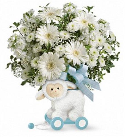 Photo of flowers: Sweet Litle Lamb Baby Boy Blue