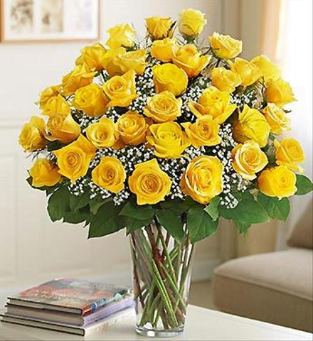 Photo of flowers: 36 Yellow Roses Vased with Babys Breath