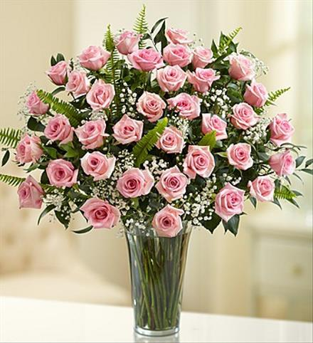 Photo of flowers: 36 Pink Roses Vased with Babys Breath