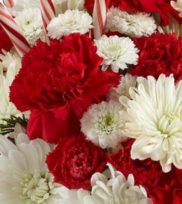 Photo of flowers: Florist Designed Red and White Flowers