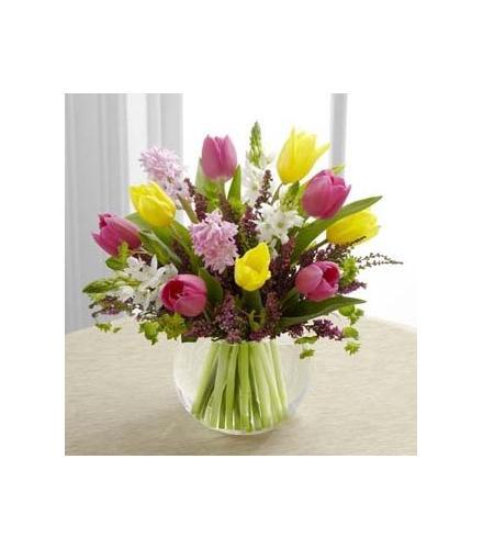 Photo of flowers: Bountiful Beauty Tulips Hyacinths