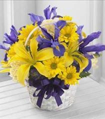 Photo of Spirit of Spring Basket  - B25-4126