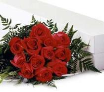 Photo of 12 Medium stem Roses Gift Wrapped  - 12RM