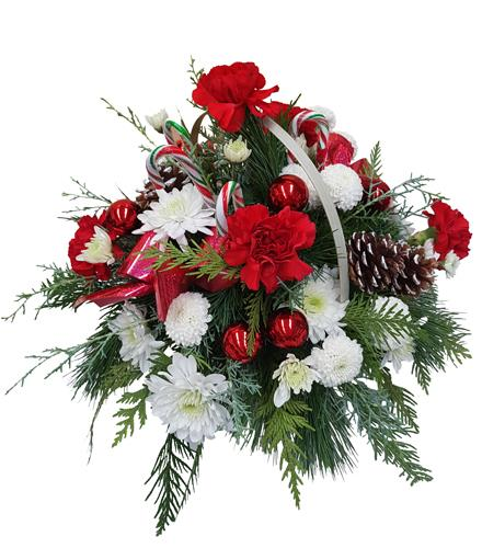 Photo of flowers: Red and White Holiday Centerpiece