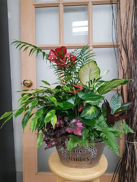 Photo of flowers: Tropical Planter BF11072