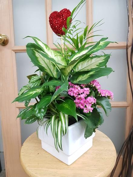 Photo of flowers: Tropical Planter BF11074