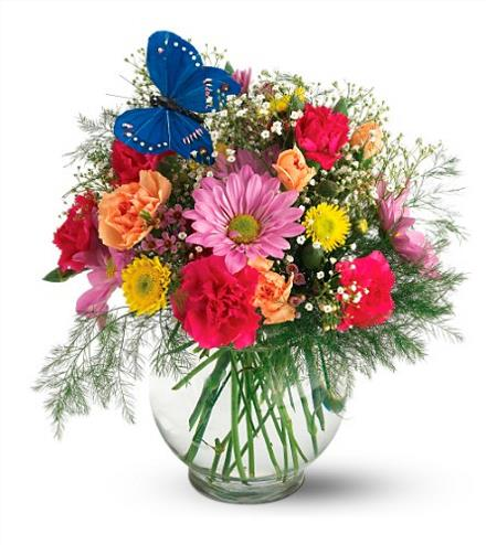 Photo of flowers: Butterfly Blossoms Vase