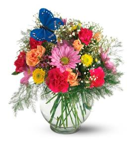 Photo of flowers: Butterfly Blossoms Vase TF-F1