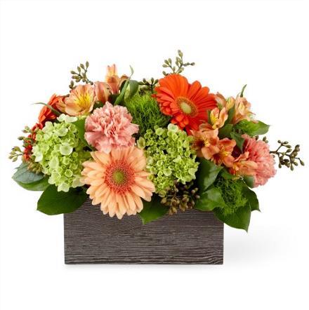 Photo of flowers: Hello Bouquet D01