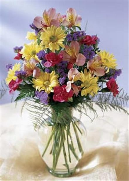 Photo of flowers: Festive Best Wishes 2