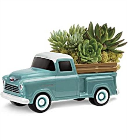 Photo of flowers: Perfect Chevy Pickup Succulents T18f110