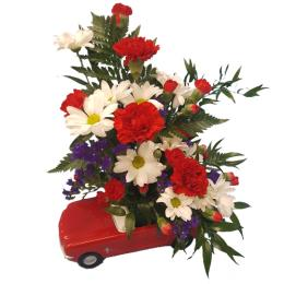 Photo of flowers: Red and White flowers in Mustang BF11178