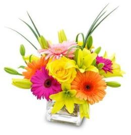 Photo of flowers: Stunning Bright in Cube Vase