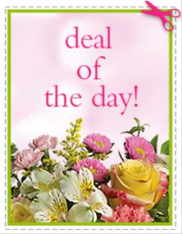 Photo of flowers: Deal of The Day 3