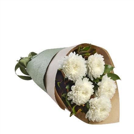 Photo of flowers: Delia  Large Football Mums