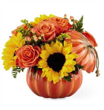 Photo of flowers: Harvest Traditions Pumpkin 19-F2