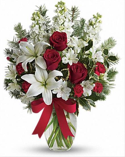 Photo of flowers: Winter Snowflakes
