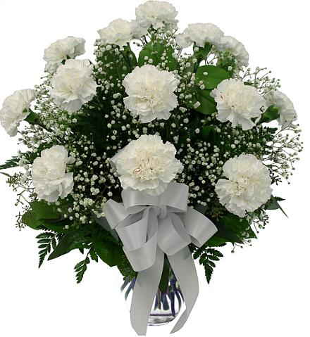 Photo of flowers: White Carnations in Vase