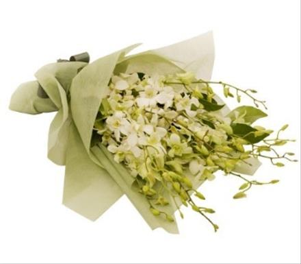 Photo of flowers: Exotic Orchids Gift Wrapped