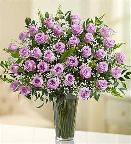 Photo of flowers: 36 Purple Roses Vased with Babys Breath