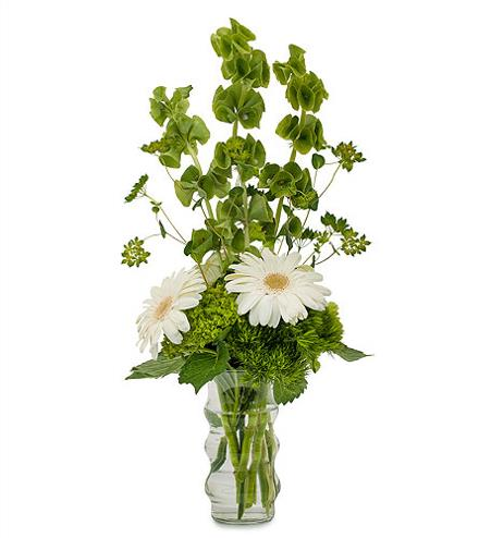 Photo of BF1189/TMF14-222 (Includes 5 gerbera)