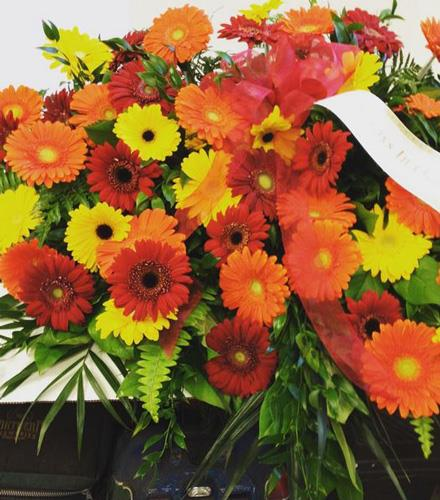 Photo of flowers: Casket Sspray of all Gerbera