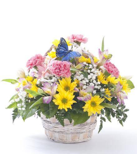 Photo of flowers: Cheery Flower Basket with Butterfly