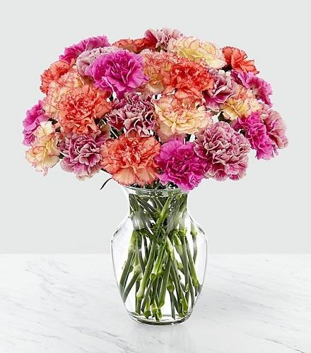 Photo of flowers: 24 Carnations Vased Perfectly Frilling