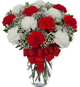 Photo of flowers: Red and White  Carnations Vased