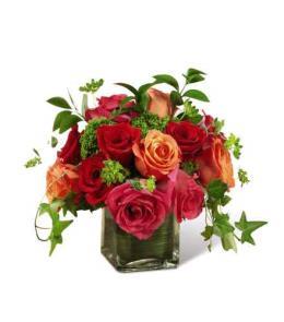 Photo of The  Lush Life Rose Arrangement  - E2-5240
