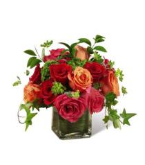 Photo of The  Lush Life Rose Arrangement  - E2-5240