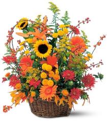 Photo of flowers: TF73-1 Signature Fall Arrangement