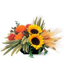Photo of Square Mounded Arrangement - TF76-3