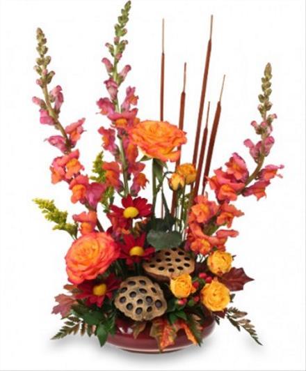 Photo of flowers: Harvest New Moon