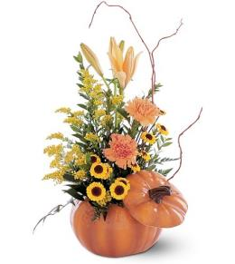 Photo of Pumpkin Fresh Flower Arrangement - TF79-1