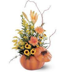 Photo of Pumpkin Fresh Flower Arrangement - TF79-1