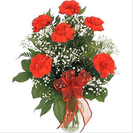 Photo of BF1500/D110 (Minimum 6 carnations)