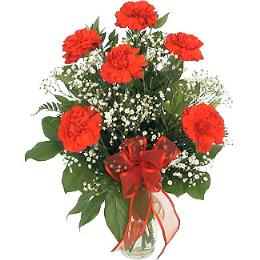 Photo of 6, 9, 12 or 24 Carnations Vased  - D110