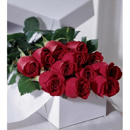 Photo of flowers: Premium Roses Gift Wrapped in Cello