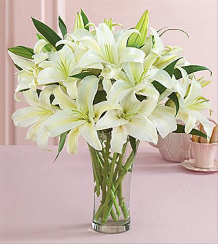 Photo of flowers: White Lilies -  Vase Bouquet