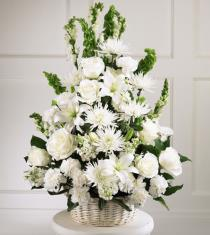 Photo of Eternal Arrangement Light  - S4-4211