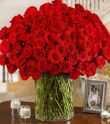 Photo of BF2039/RP84 (100 Roses in Vase)