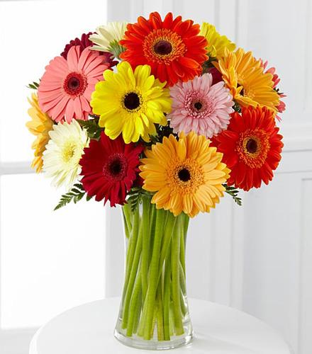 Photo of flowers: Colorful World Gerbera Daisy Vase