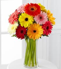 Photo of Colorful World Gerbera Daisy Vase - FG27
