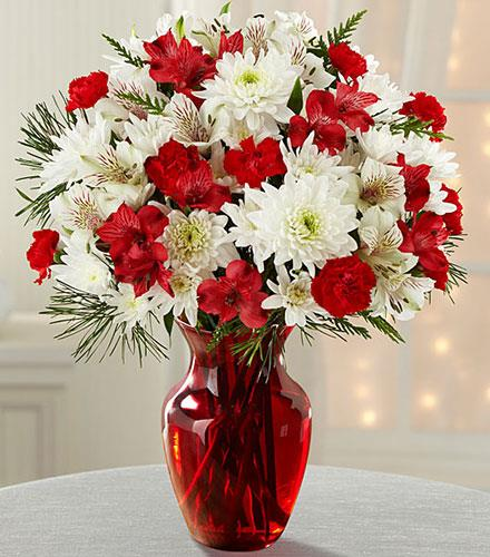 Photo of flowers: Joy to the World Holiday