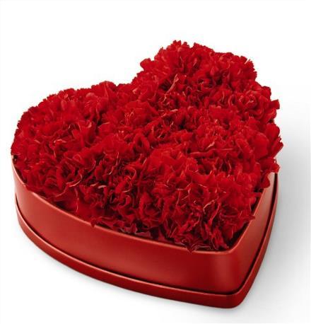 Photo of flowers: Heartfelt Carnation Box with florist  foam/water