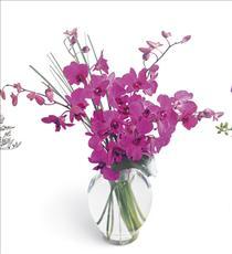 Photo of Morning Joy Dendrobium Orchids in Vase - B1-3702