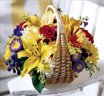 Photo of Garden Basket of Flowers - B24-3284